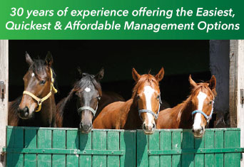 horse manure removal service